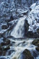 Triberg Waterfall by cleverless