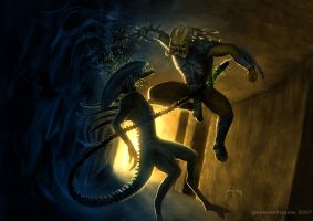 AVP by gavwoodhouse