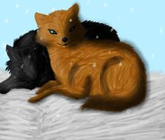 Wolves Laying In Snow by kelseyandfreinds99