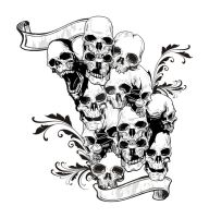 Skulls Collided by andifitriyanto