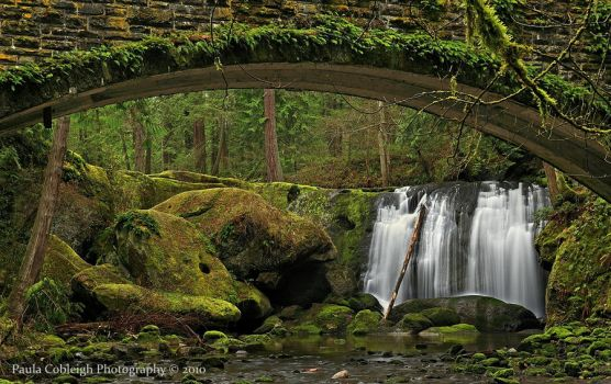 Whatcom Falls II by La-Vita-a-Bella