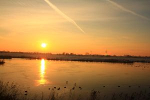 12-12-08 The Sunset 4 by Herdervriend