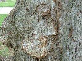 Deformed Tree 2 by Rice-Puppy