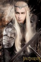 Thranduil The hobbit 3 cosplay by Jiakidarkness