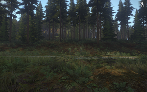 Woodland camo test, 2nd edition, distance by Mathias1978