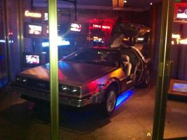 BACK TO THE FUTURE CAR! by AlaskahAndDaMunks