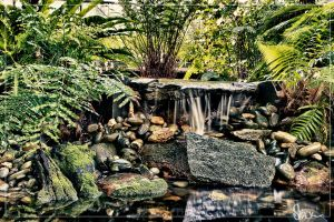 Rainforest Mini Waterfall by small-sk8er