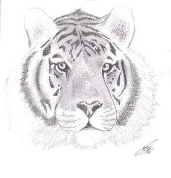 Le Tigre by reprobated-entity