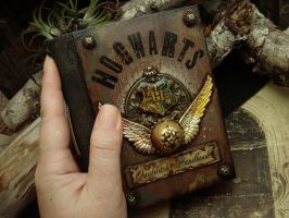 Quidditch Handbook - New Palm Size Journal by luthien27