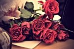 A Rose, A Year. by AxiomFable