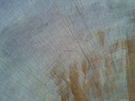 Wood Texture 15 by Fea-Fanuilos-Stock