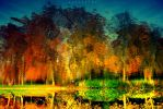 today I swam in the colors of fall by alahay