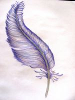 Feather by LifYeah