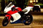 Kawasaki Ninja 250R Indonesia by vstary