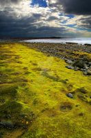 Moss on cliffs by jordygraph