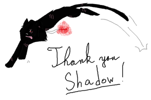 Thank you Shadow. by 9Kate9