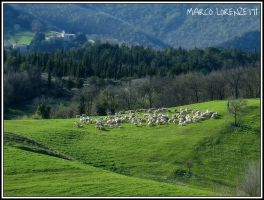 SASSOFERRATO (AN) - PICNIK ON THE GRASS by MarcoLorenzetti