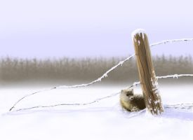 At the Fence Post by CVDart1990