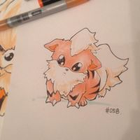 pkmn of the day- warm pups by ExShen