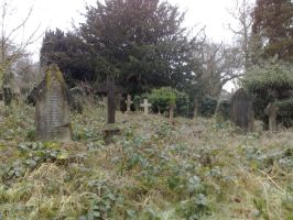 Southampton old cemetery 4 by thelaird1