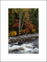 Fall Colors by Stream, NH by AcousticAlchemy