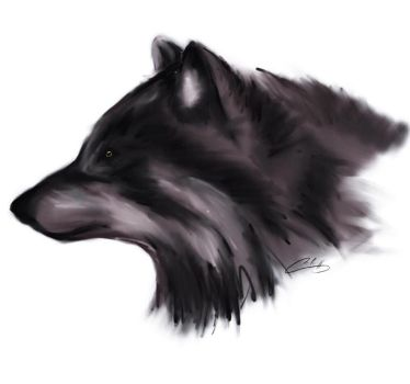 wolf by norn92
