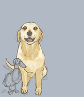 A Dog and his duck by FortyFourArrows
