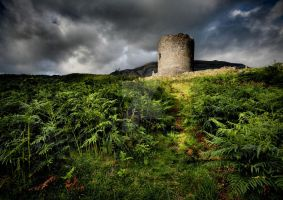 Dolbadarn Castle Light by ArwensGrace