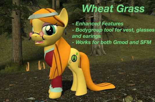 Gmod/SFM Download: Wheat Grass by MeltingMan234
