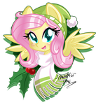Holidays Special: Fluttershy by DANMAKUMAN