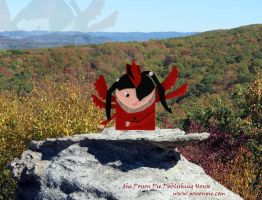 Cardinal Faerie on McCloud Mountain, Tennessee by PoisonPiePublishing