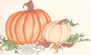Half Colored Pumpkins by Caylyngasm