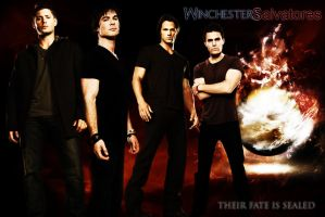 Winchesters and Salvatores by Pure-Potential