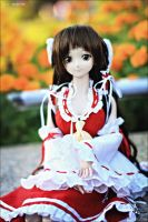 Dollfie Reimu by Mr-Vin