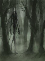 Slenderman's Forest by Hyperactive-Nutcase