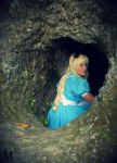 The white rabbit's hole! by melissa-andrade