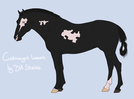 Horse Adoptable #1 - CLOSED by Horse-Emotion