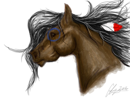 single layer realistic- indian war horse. by Blowmeonelastkiss