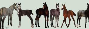 RAS 3DE foal prizes by RainbowFountains