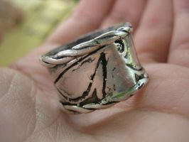 Sterling Silver Ring 3 by sing2mi