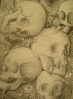 Skulls by tabrissotherhalf