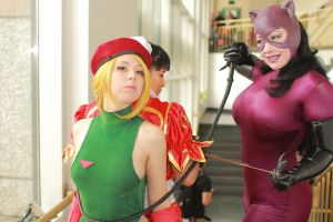 Anime Boston 2014 - Worlds' Strongest Women(PS) 23 by VideoGameStupid