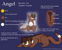Angel reference by SpitfiresOnIce