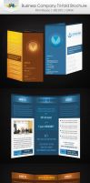 Business Company Tri-Fold Brochure by Saptarang