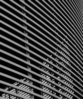 Lines by ainoani