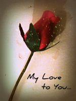 My Love to You... by Tzila
