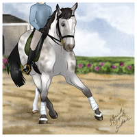Cute Dressage by Birds-Sing-Stables