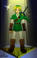 Link - Hero of Time by LordSleeper