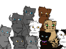 My Favourite Warrior Cats by jodiepikachu