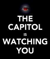 THE CAPITOL IS WATCHING YOU by ClockworkShadows